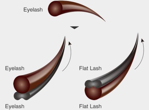 flatlash-merit4-img